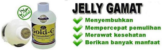 jelly gamat baru